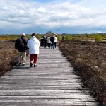 Corlea Bog Trackway