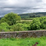 Church of Ireland, Attanagh, Kilkenny : Boundary wall