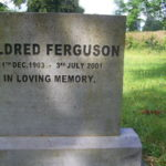 Ferguson 1