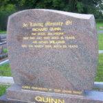 Quinn 2