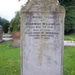 Wilkinson 3