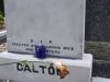 dalton-1a