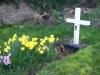 rosenallis-graveyard-4