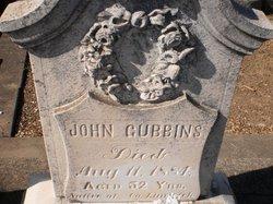 John Gubbins